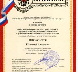 Шапкина Анастасия